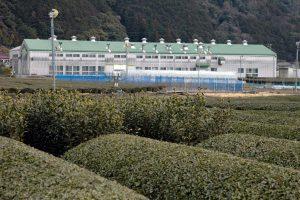 2製茶工場