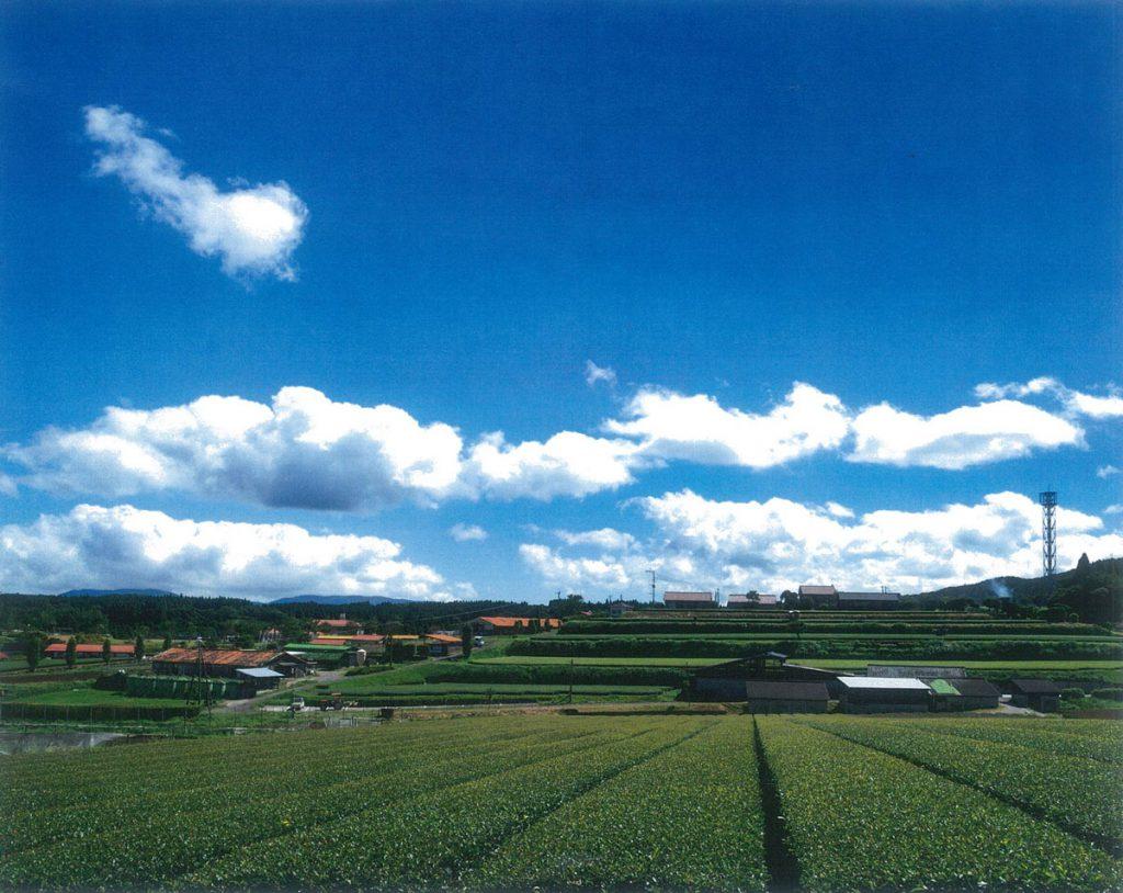 南大隅町(花の木農場全景)